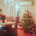 Un Noël de dernière minute !