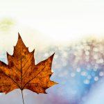{Carnet de voyages} Le Canada - Les préparatifs