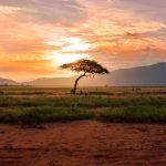 Les pays africains à visiter en 2019